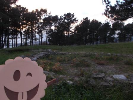 Restos arqueológicos de los castros de Neixón